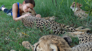 Keep Calm and Hug a Jaguar - Volunteering for Wildlife
