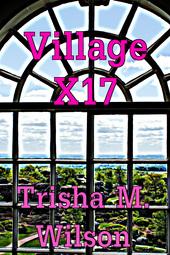 Village X17